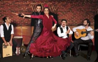 essential-flamenco-4